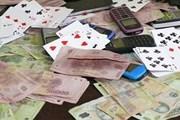 Bắt quả tang vụ đánh bạc quy mô lớn giữa rẫy càphê Tây Nguyên