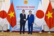 Nhật Bản sẽ ủng hộ và hợp tác, hỗ trợ Việt Nam phát triển bền vững