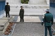 Hàn Quốc thành lập hội đồng biến DMZ thành khu du lịch hòa bình