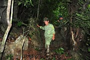 """Đến Na Hang, gặp """"cuốn từ điển sống"""" về rừng nơi đại ngàn Lũng Vai"""