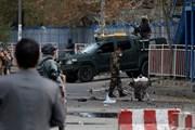 Hàng chục người thương vong trong vụ đánh bom liều chết ở Kabul