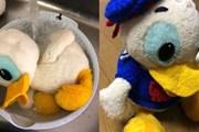 Bảo tàng Nhật Bản vẫn chờ tìm được chủ nhân của món đồ chơi thất lạc