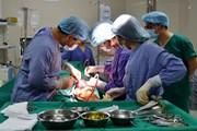 Cấp cứu bệnh nhân nguy kịch do bị máy đốn chè cắt vào đùi
