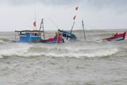 Cứu 10 thuyền viên nước ngoài gặp nạn trên vùng biển Côn Đảo