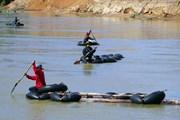Tái diễn tình trạng vận chuyển gỗ lậu trên sông Đăk Bla của Kon Tum