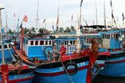 Các tỉnh ven biển Quảng Ngãi đến Cà Mau ứng phó với áp thấp nhiệt đới