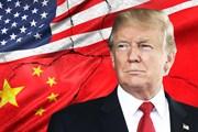 Tổng thống Mỹ lạc quan về thỏa thuận thương mại với Trung Quốc