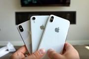 Apple sẽ cắt giảm sản lượng tất cả các mẫu iPhone mới trong năm nay