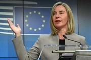 EU khẳng định cần có nhóm liên lạc trong vấn đề Venezuela
