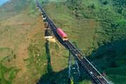 Khai trương tuyến tàu hỏa leo núi dài nhất Việt Nam tại Sa Pa