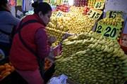Báo động nạn lãng phí thực phẩm tại Mỹ, Canada và Mexico