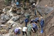 Lật từng hòn đá, cành cây tìm kiếm người mất tích tại Lai Châu