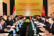 Thúc đẩy quan hệ Đối tác chiến lược Việt Nam-Indonesia