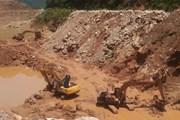 Thái Nguyên: Không bao che sai phạm trong bảo vệ rừng tại Thần Sa