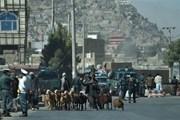 Cảnh báo thách thức chính trị làm chệch hướng bầu cử tại Afghanistan