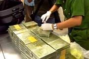 Quảng Trị: Liên tiếp triệt phá thành công các chuyên án ma túy lớn