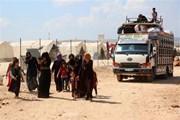 Ngoại trưởng Thổ Nhĩ Kỳ-Mỹ điện đàm về tình hình Syria