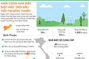 [Infographics] Tiềm năng phát triển điện Mặt Trời tại Bình Thuận
