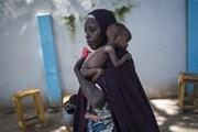 Kích hoạt cơ chế toàn cầu đầu tiên nhằm ngăn ngừa nạn đói
