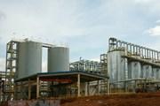 Lâm Đồng: Kiểm tra bãi tập kết chất thải từ dự án bauxite Tân Rai