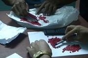 Quảng Trị: Bắt giữ hai vụ vận chuyển ma túy lớn chỉ trong một ngày