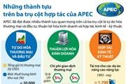 [Infographics] Những thành tựu trên ba trụ cột hợp tác của APEC