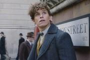 'The Crimes of Grindelwald' thắng lớn trên thị trường quốc tế