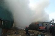 TP,HCM: Cháy 3 kho phế liệu, trên 500m2 nhà xưởng bị thiêu rụi