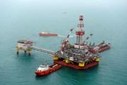 Giá dầu châu Á tăng cao lên mức 'đỉnh' kể từ đầu năm