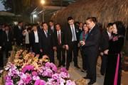 Hình ảnh Đoàn đại biểu Đảng Lao động Triều Tiên thăm HTX Đan Hoài