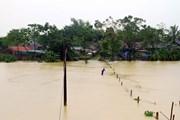 Nghệ An: Mưa lớn khiến nhiều nơi ngập nặng, giao thông bị chia cắt