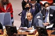 Hình ảnh Chủ tịch nước tại Phiên thảo luận về Biến đổi khí hậu
