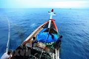 Ủy ban Nhân dân cấp huyện có thể quyết định giao khu vực biển