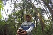 Làm gì để cộng đồng thực sự thành chủ rừng, được hưởng lợi từ rừng?