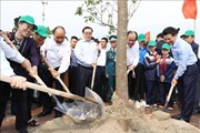 Thủ tướng phát động 'Tết trồng cây đời đời nhớ ơn Bác Hồ'