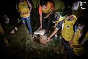 Đêm Trung thu đặc biệt ở Cúc Phương: Thả động vật hoang dã 'về nhà'