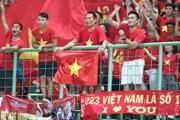 Vietnam Airlines phục vụ người hâm mộ bằng những chuyến 'chuyên cơ'