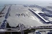 Ngừng các chuyến bay đến Osaka do sân bay bị siêu bão tàn phá