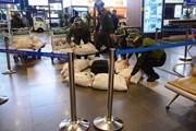 Cảng hàng không Nội Bài diễn tập đối phó tình huống đặt bom, mìn
