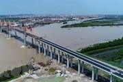 Bộ Giao thông yêu cầu kiểm tra cầu gần 7.300 tỷ đồng lún, võng