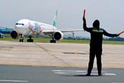 Nhân viên hàng không làm việc dưới nắng nóng thiêu đốt ở sân bay