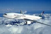 Hàng không New Zealand xem xét mở đường bay thẳng tới Việt Nam