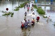 Phú Yên: Người dân khiếu kiện việc hỗ trợ thiệt hại sau bão số 12