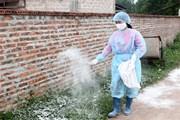 Cả nước chỉ còn 1 ổ dịch cúm gia cầm A/H5N6 ở thành phố Cao Bằng