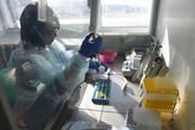 Nga nghiên cứu loại vắcxin mới chống lại bệnh lao hữu hiệu