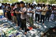 Indonesia: Sẽ ngừng tìm kiếm nạn nhân mất tích từ ngày 11/10