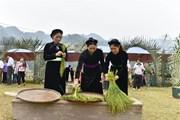 Thơm nức Lễ hội giã cốm của người Tày ở vùng cao Côn Lôn