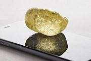 [Video] Canada phát hiện viên kim cương lớn ngoài sức tưởng tượng