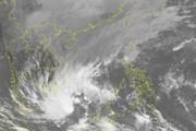 Cơn bão đầu tiên của năm 2019 đang hướng về phía mũi Cà Mau