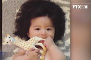 [Video] Bé gái Nhật Bản 1 tuổi có mái tóc dày bồng bềnh kỳ lạ